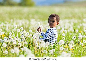 mignon, peu, extérieur, gens, garçon, -, américain, noir, africaine, jouer
