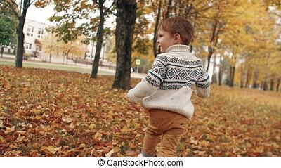 mignon, peu, lent, garçon, mo, parc, courant, ruelle, automne, surprenant, par