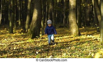mignon, peu, lent, garçon, ruelle, automne, courant, park., par, mouvement