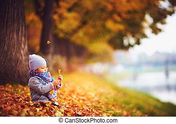 mignon, peu, séance, feuilles, automne, dorlotez fille, baissé