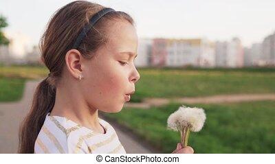 mignon, peu, souffler, pissenlit, pelouse, mouvement, jour, lent, été, girl, ville