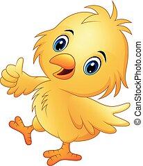mignon, pouce, isolé, haut, fond, poulet bébé, blanc