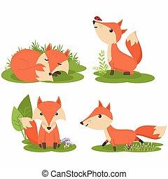 mignon, renard, caractère, ensemble, illustration, dessin animé