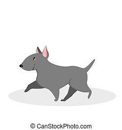 mignon, rigolote, marche., caractère, gris, chien, chiot