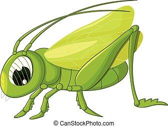Mignon sauterelle dessin anim sauterelle mignon - Sauterelle dessin ...