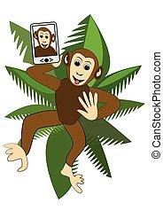 mignon, singe, rigolote, selfie, couronne, illustration, arbre, paume, confection, enfants