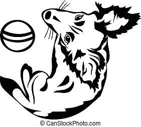 mignon, stencil, balle, chien, noir