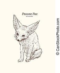 mignon, style, fox., vendange, croquis, illustration, ...