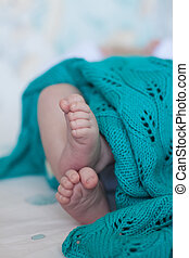 mignon, turquoise, blanket., sur, tricoté, petit, sélectif, bébés, foyer., talons, pieds