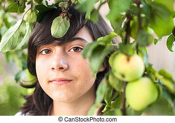 mignon, verger pomme, jeune, closeup, portrait., girl