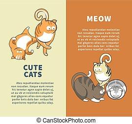 mignon, vertical, meow, promotionnel, dire, chats, affiches