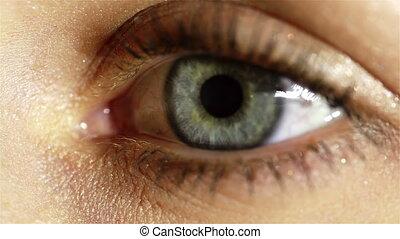 migoczący, oko