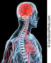 migraene, dolor de cabeza
