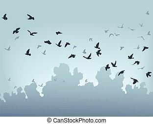 Migration - Vector illustration of a flock of flying birds