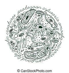 mikroorganizm, ręka, pociągnięty, wizerunek