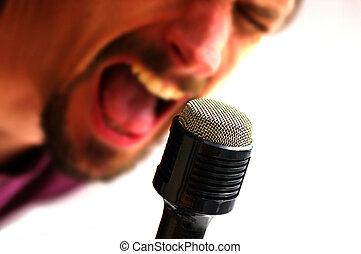 mikrophon, und, s�nger