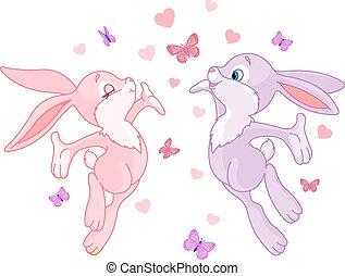 miláček, bunnies