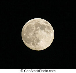 milieu, énorme, pleine lune, nuit