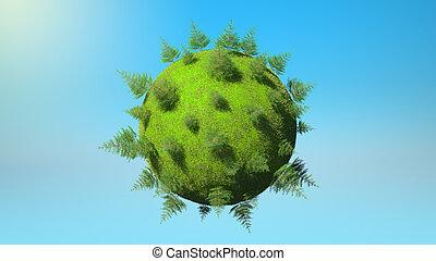 milieu, concept, firtrees, -, planeet land