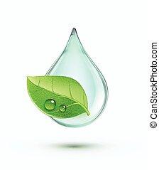 milieu, concept, groene