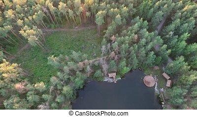 milieu, forêt lac