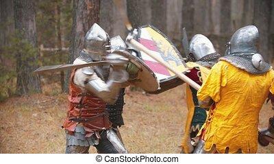 milieu, hommes, quatre, avoir, champ, knightes, forêt, baston, formation
