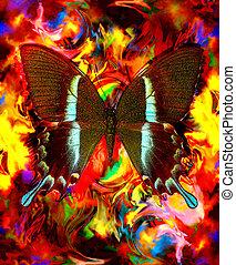 milieu, kleur, abstract, illustratie, color., sinaasappel, achtergrond, gele, gemengd, vlinder, rood