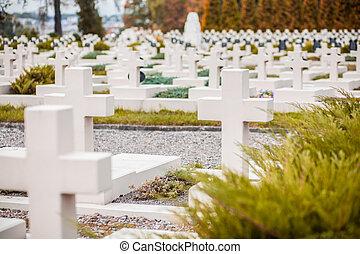 Military Cemetery Lvov - lviv ballet opera theatre lvov...
