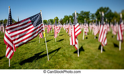 Military flags in the park blowing in the wind