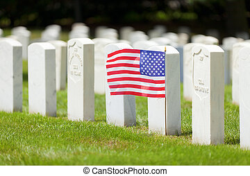 Military graves - Military section at Lexington National...