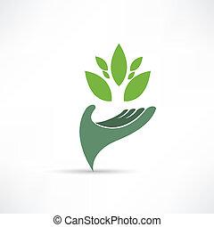 miljö, ekologisk, ikon