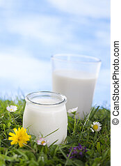 milk and yoghurt on the grass with