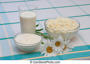 Milk, sour cream and cottage cheese in glass on check...