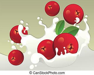 Milk splash with cranberries