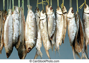 milkfish is being hung in the drying process