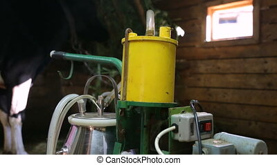 Milking machine in cowshed closeup
