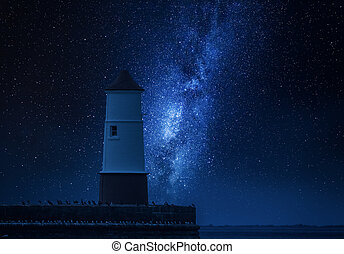 Milky way and lantern over the the sea with birds