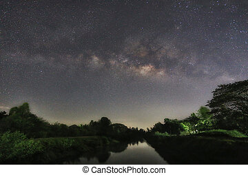 Milky Way and silhouette tree of canal view. - Milky Way and...