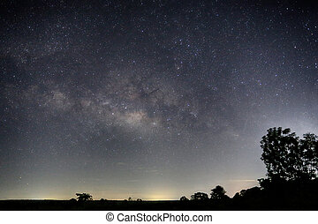 Milky Way and silhouette tree view. - Milky Way and...