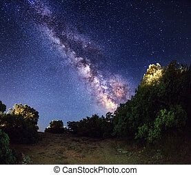 Milky Way. Beautiful summer night sky with stars in forest. Crim