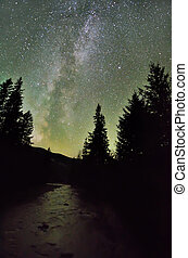 Milky way galaxy over the river and dark pine forest