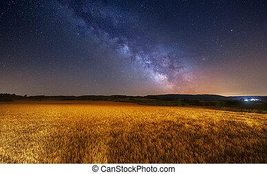 Milky Way over cereal field