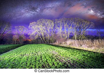 Milky Way over the field.