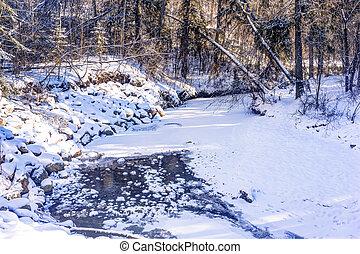 Mill Creek ravine, Edmonton, Alberta, Canada
