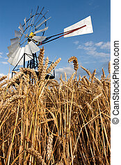 Mill n crops - Traditional vaned windmill or windpump from...