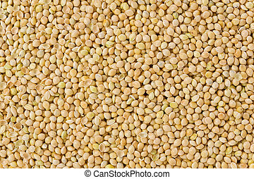 Background texture of millet grains.