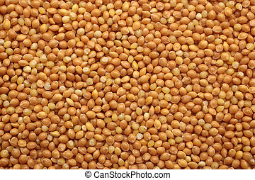 Millet, for backgrounds or textures