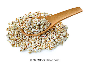 Millet in wood spoon on white background