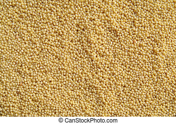 Millet - millet, seed, cereal, yellow, backgrounds, texture...