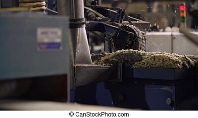 Milling machine at sawmill, wood industry
